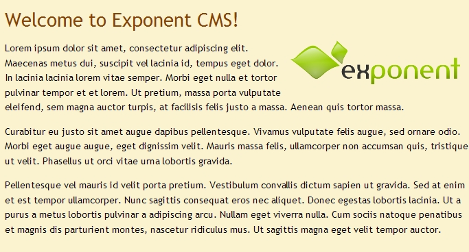 Exponent CMS Image Editing